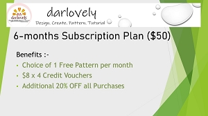 6-months Subscription Plan